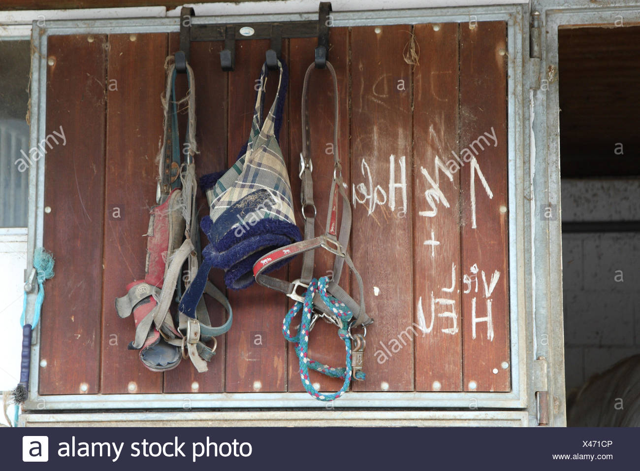 Stalltüre with horse's harness, - Stock Image