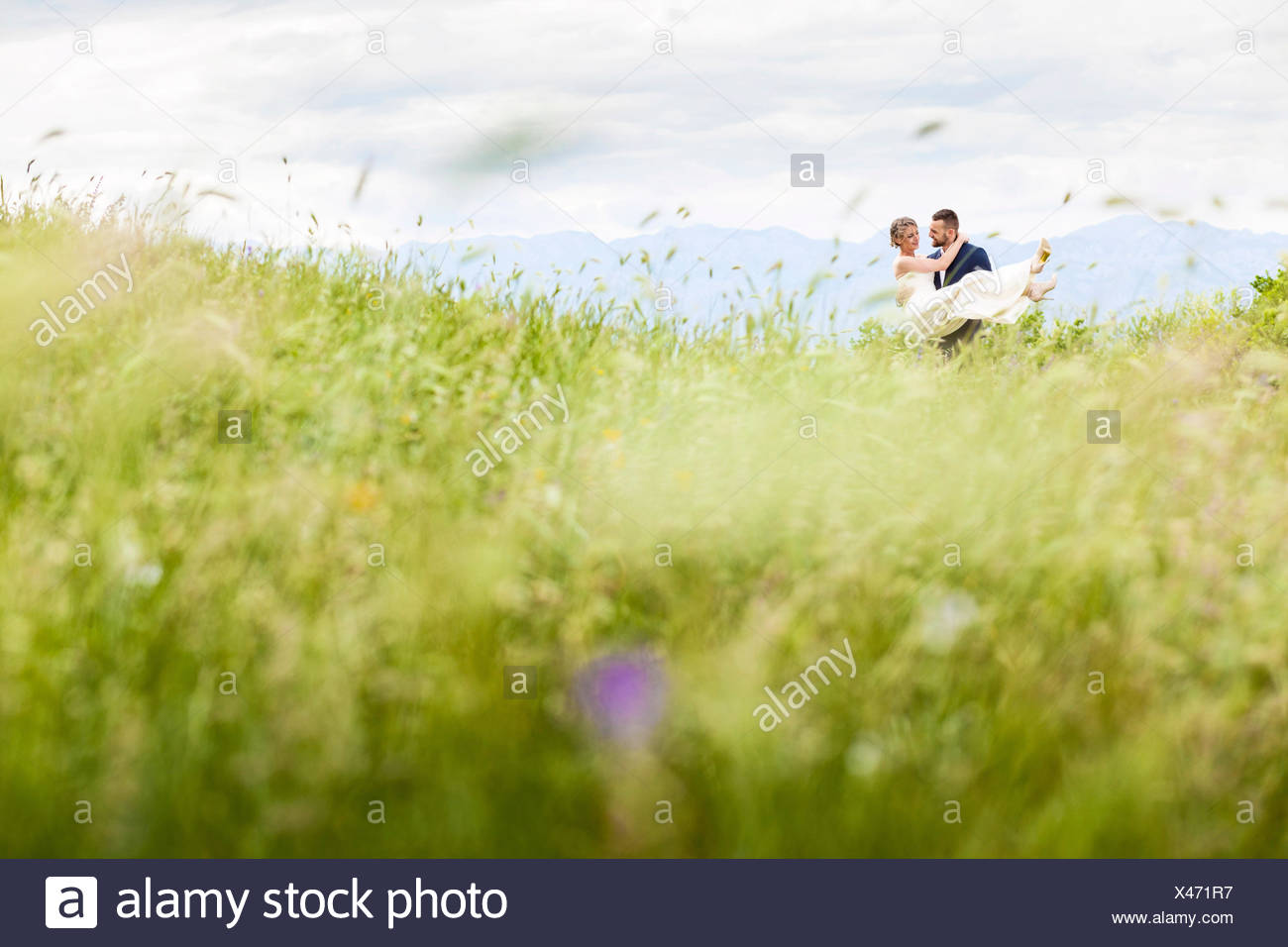 Groom carrying bride on meadow - Stock Image