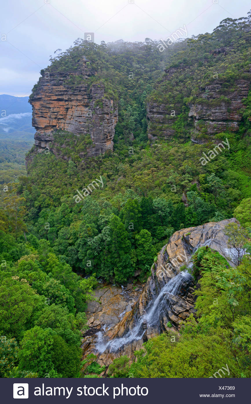 Bridal Veil Falls in the subtropical rain forest of the Blue Mountains, Australia, New South Wales, Leura - Stock Image