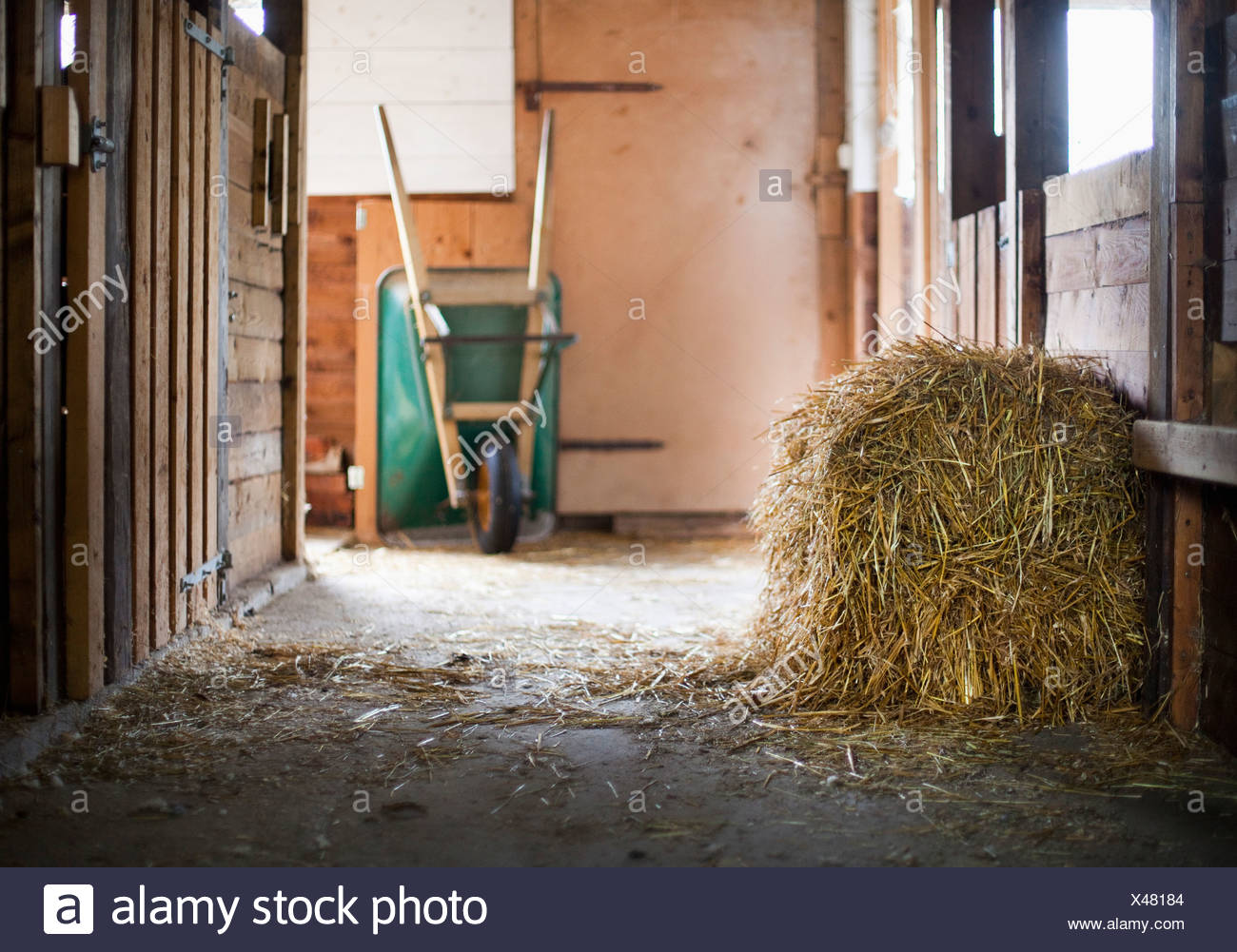 Hay with wheelbarrow in the background - Stock Image