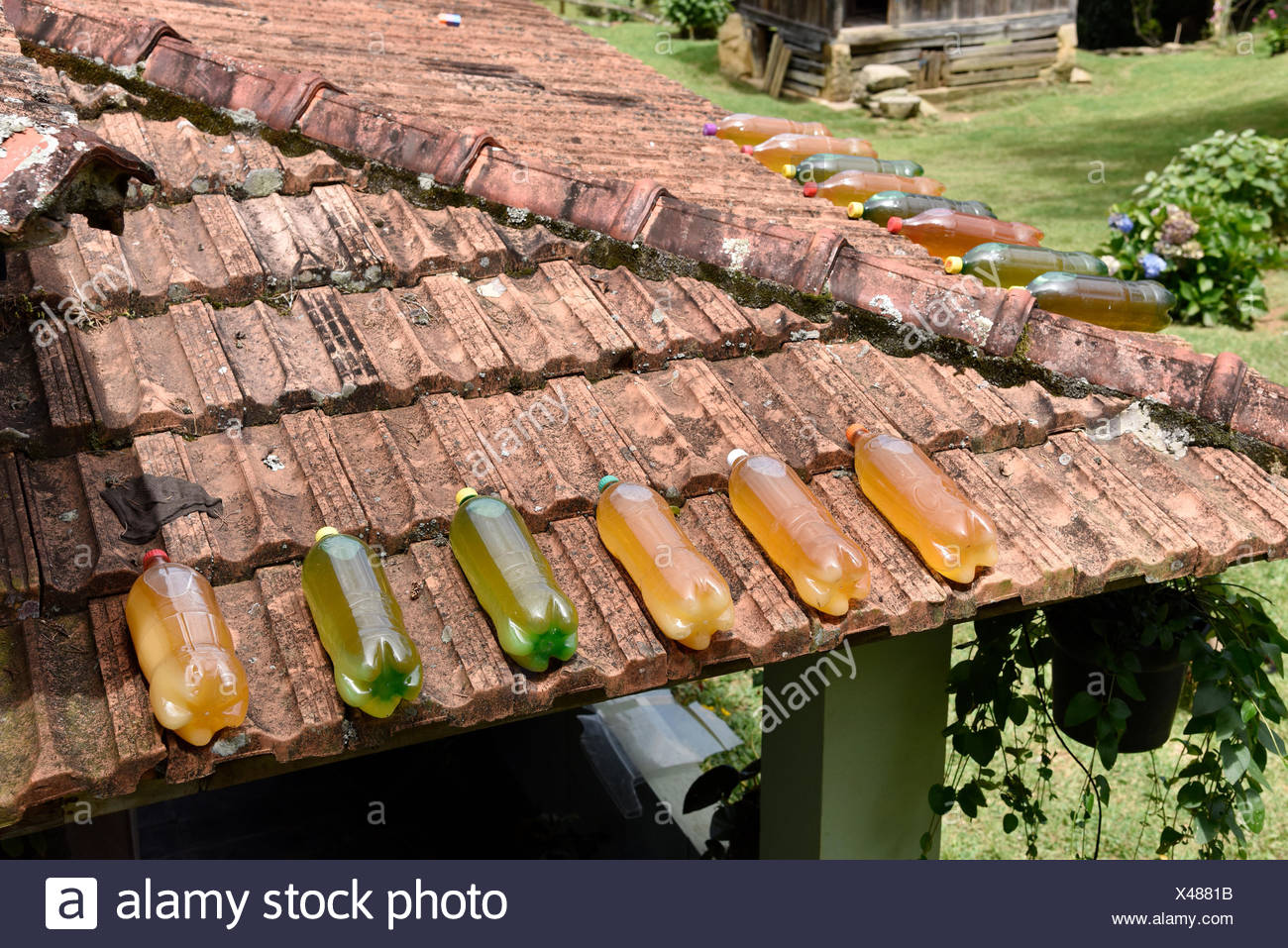 Pet bottles with honey on top of roof in a house in the neighborhood Fragária in Serra da Mantiqueira, Itamonte, Minas Gerais, Brazil, 12.2016 - Stock Image