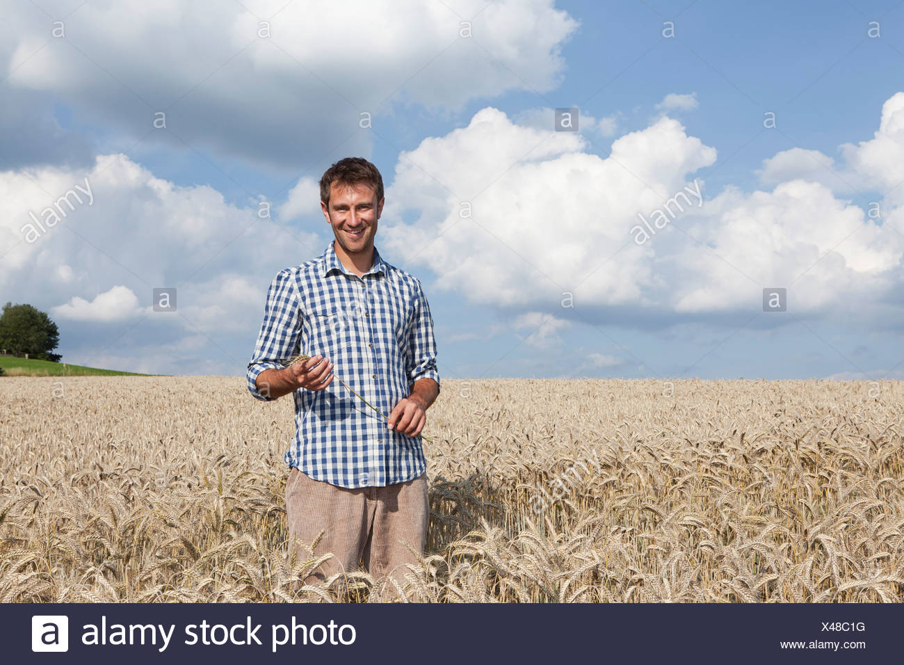 Germany, Bavaria, Altenthann, Man standing in wheat field, smiling, portrait - Stock Image