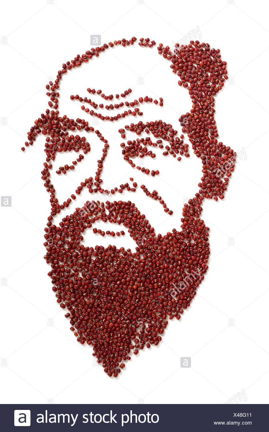 Portrait of Confucius made of red beans - Stock Image
