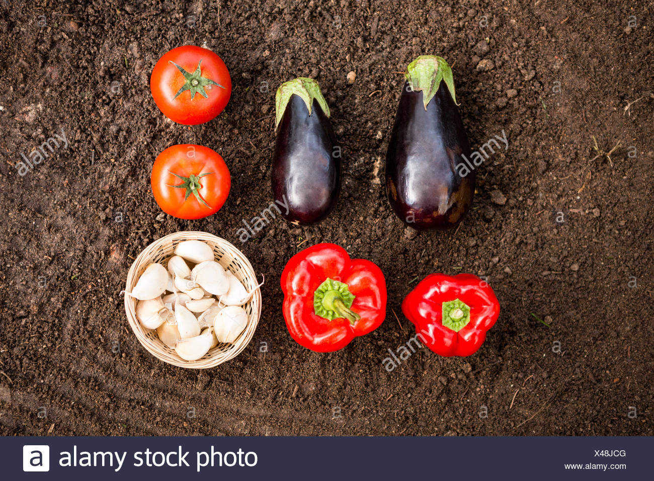 Overhead view of vegetables on dirt at garden - Stock Image
