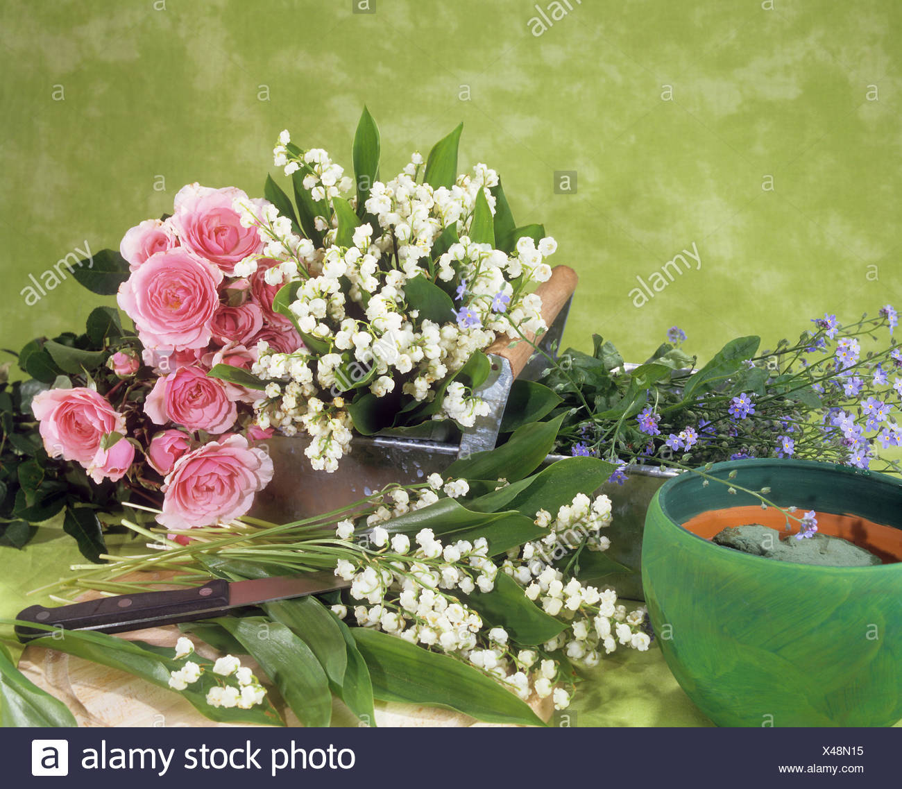 Different lilies stock photos different lilies stock images alamy different flowers stock image izmirmasajfo Image collections