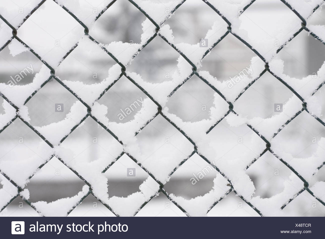 Netting Wire Stock Photos & Netting Wire Stock Images - Alamy