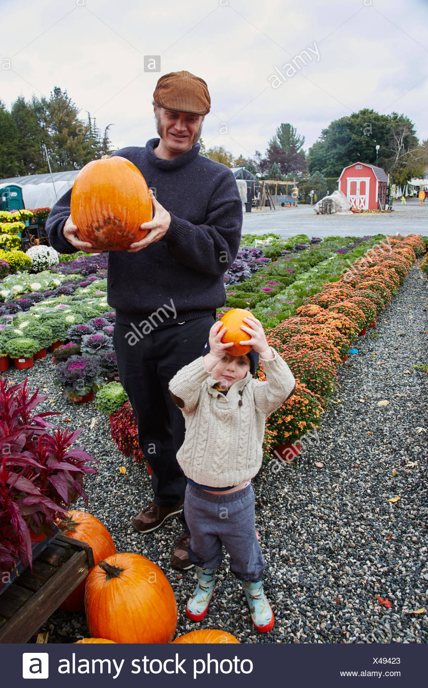 Portrait of boy and his father holding pumpkins at garden centre - Stock Image