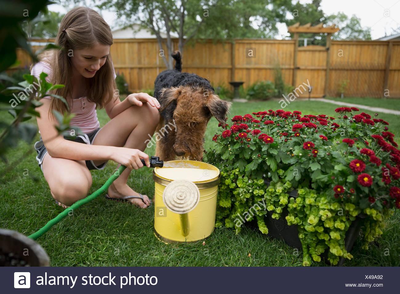 Dog watching girl filling watering can in backyard - Stock Image