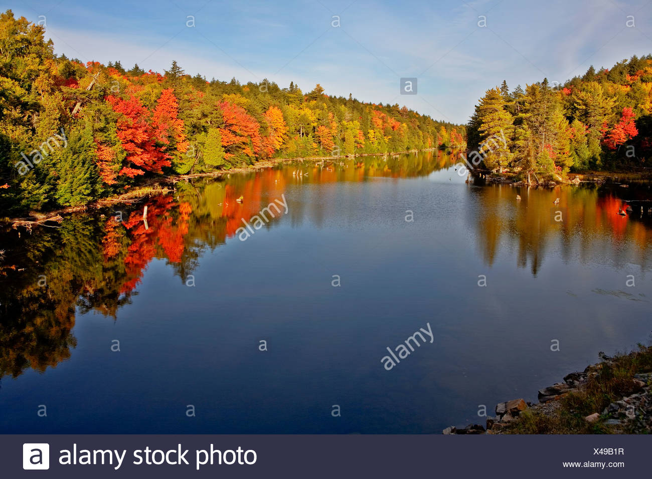 Water reflections in lake in Algonquin Park in fall, Ontario, Canada Stock Photo