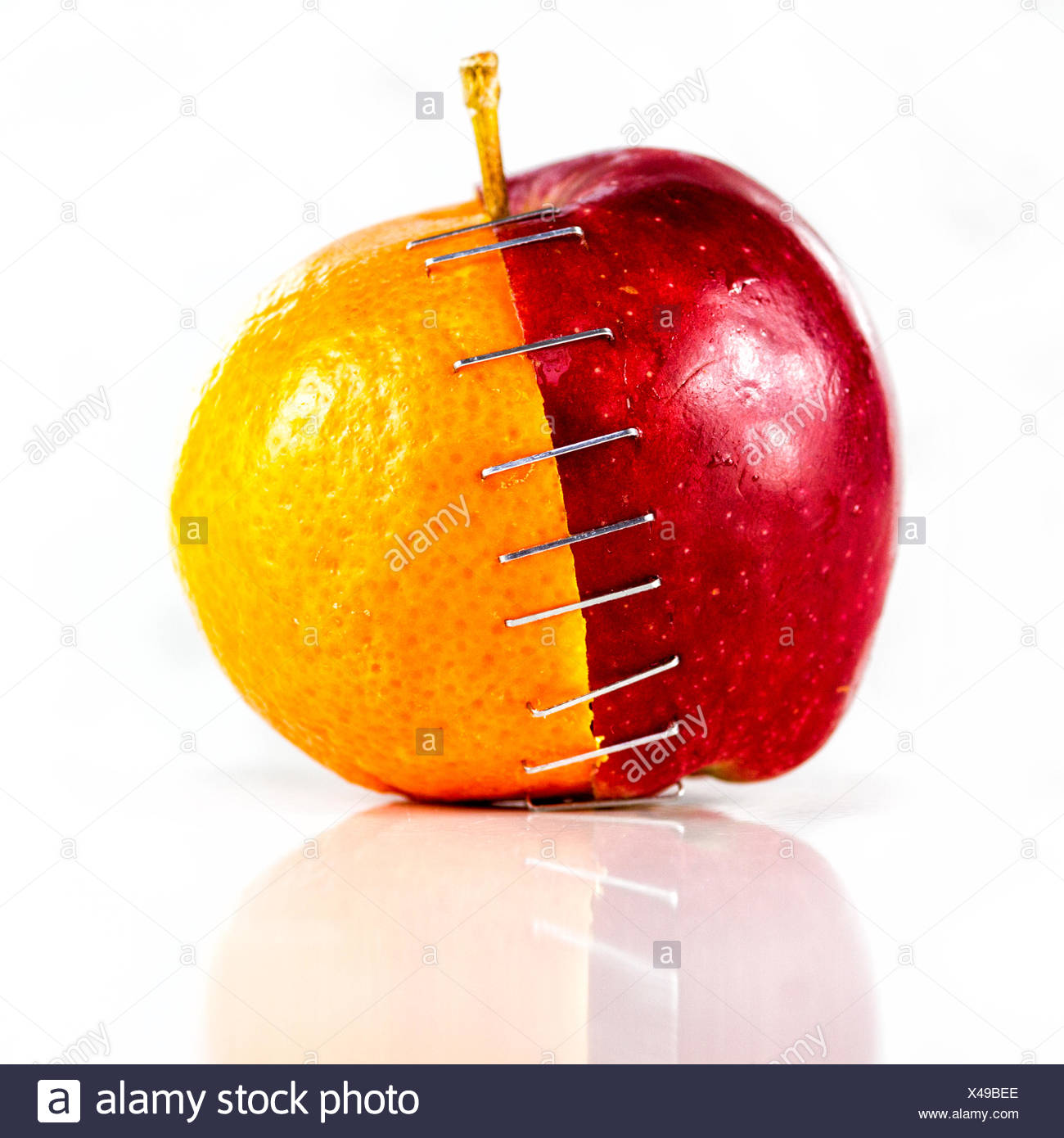 Apple and orange stapled together - Stock Image