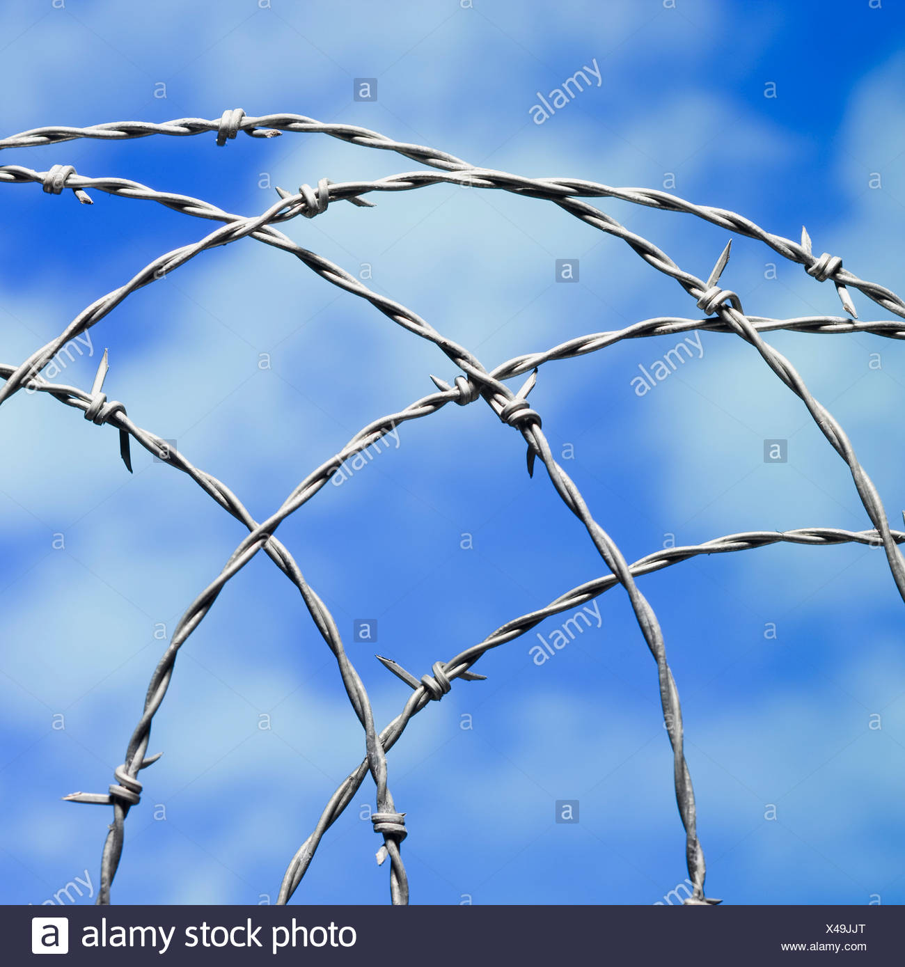 barbed wire - Stock Image