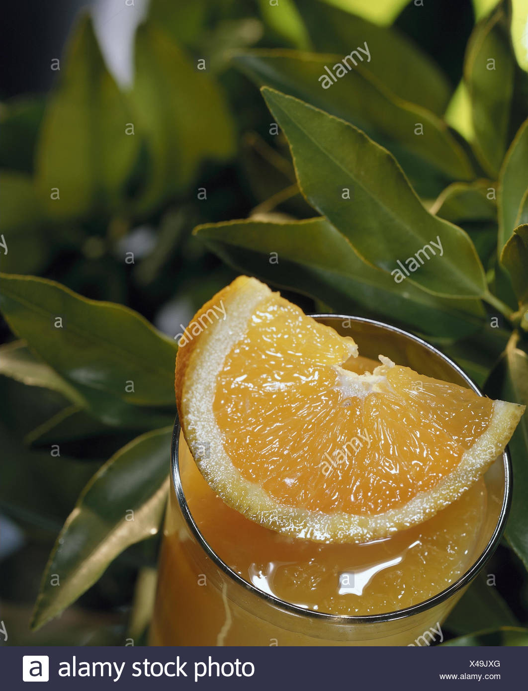 Glass, orange juice, Oragenspalte, leaves juice, fruit juice, fruit juice, orange juice, orange, Citrus sinensis, juice glass, drink, natural, alcohol-free, healthy, rich in vitamins, vitamins, leaves, long, juice, orange, slice of orange, detail, tropical fruit, refreshment, thirst-quenching, still life, object photography - Stock Image