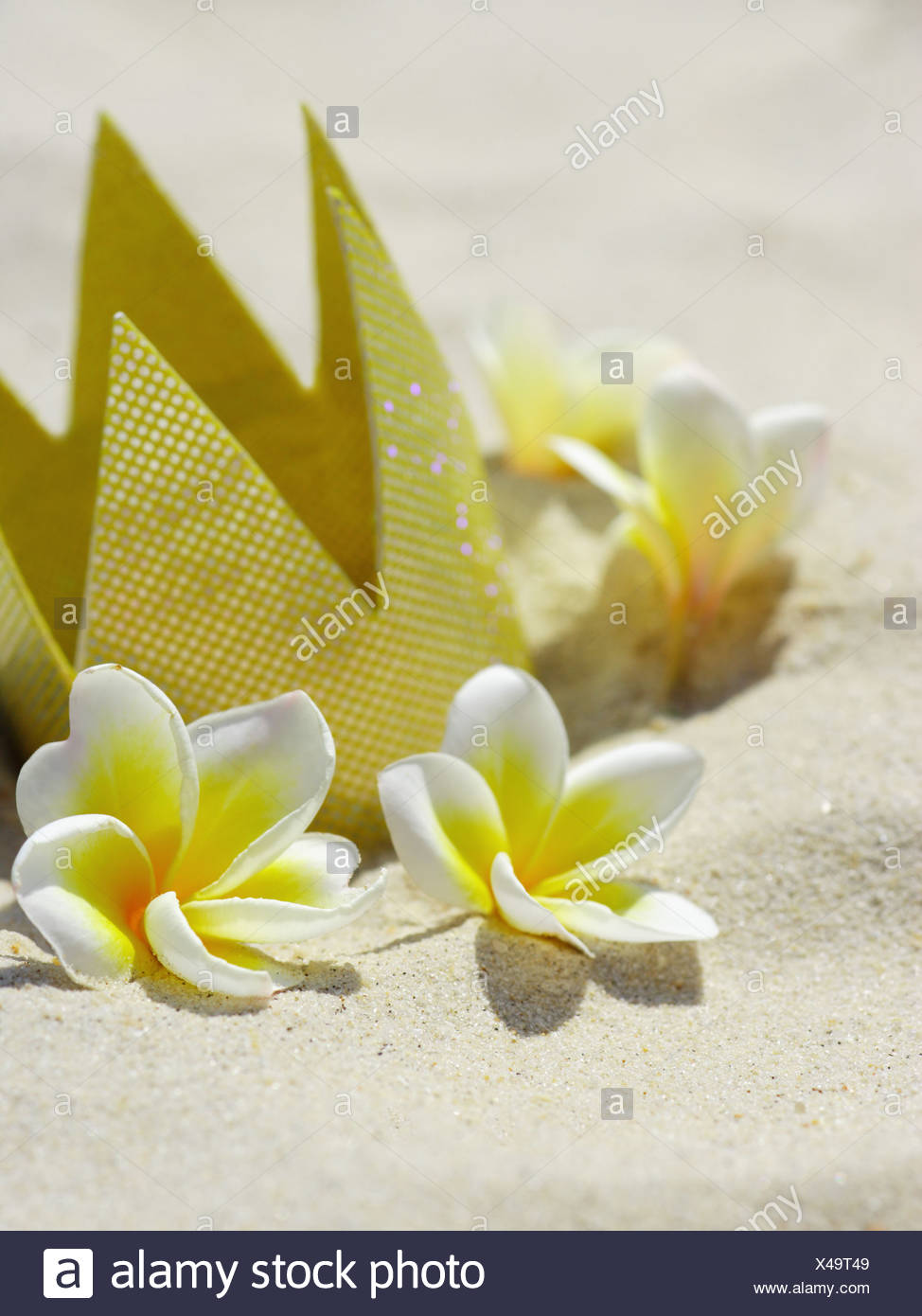 A crown flowers stock photos a crown flowers stock images alamy close up of a crown with flowers plumeria stock image izmirmasajfo