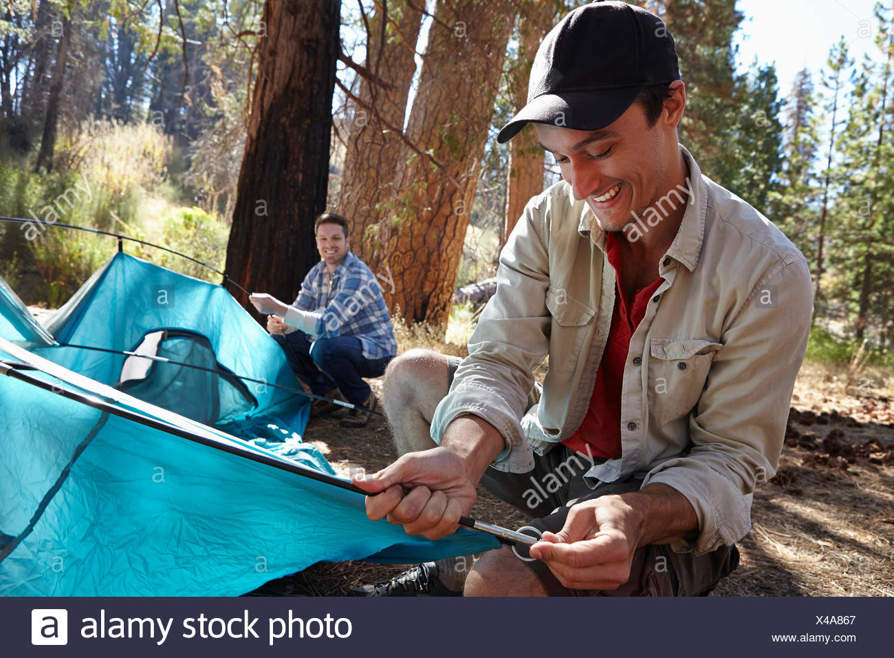 Two young male campers putting up tent in forest, Los Angeles, California, USA - Stock Image