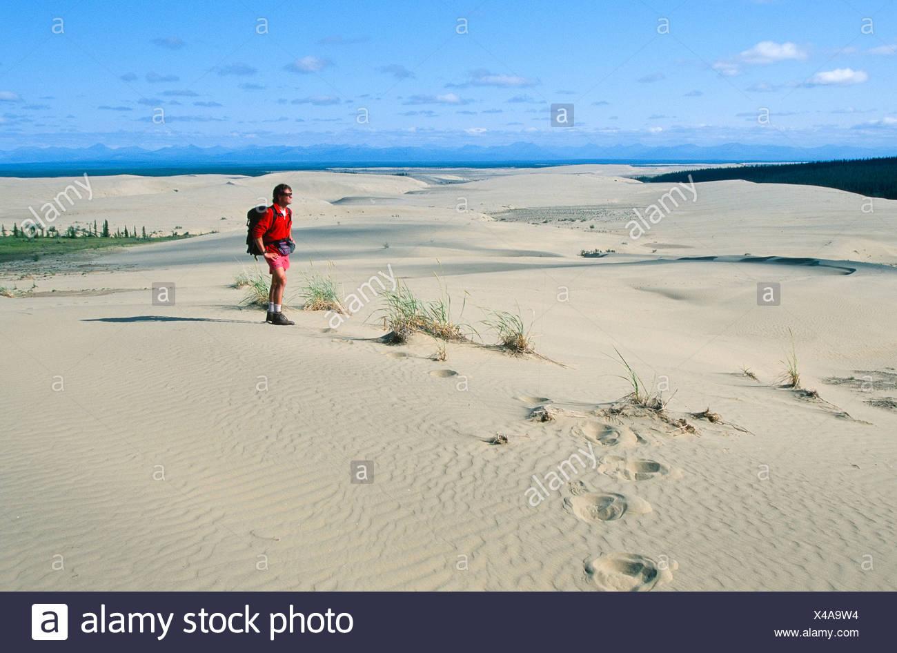 Great Kobuk Sand Dunes Stock Photos Great Kobuk Sand Dunes Stock