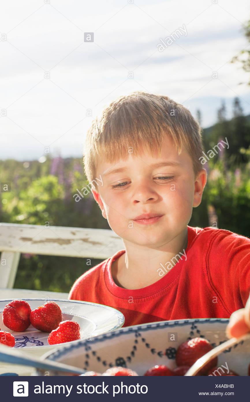 Sweden, Halsingland, Jarvso, Boy (4-5) eating strawberries in garden - Stock Image