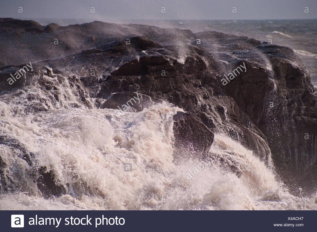Scotland, sea surf, bile coast, wave, foam, - Stock Image