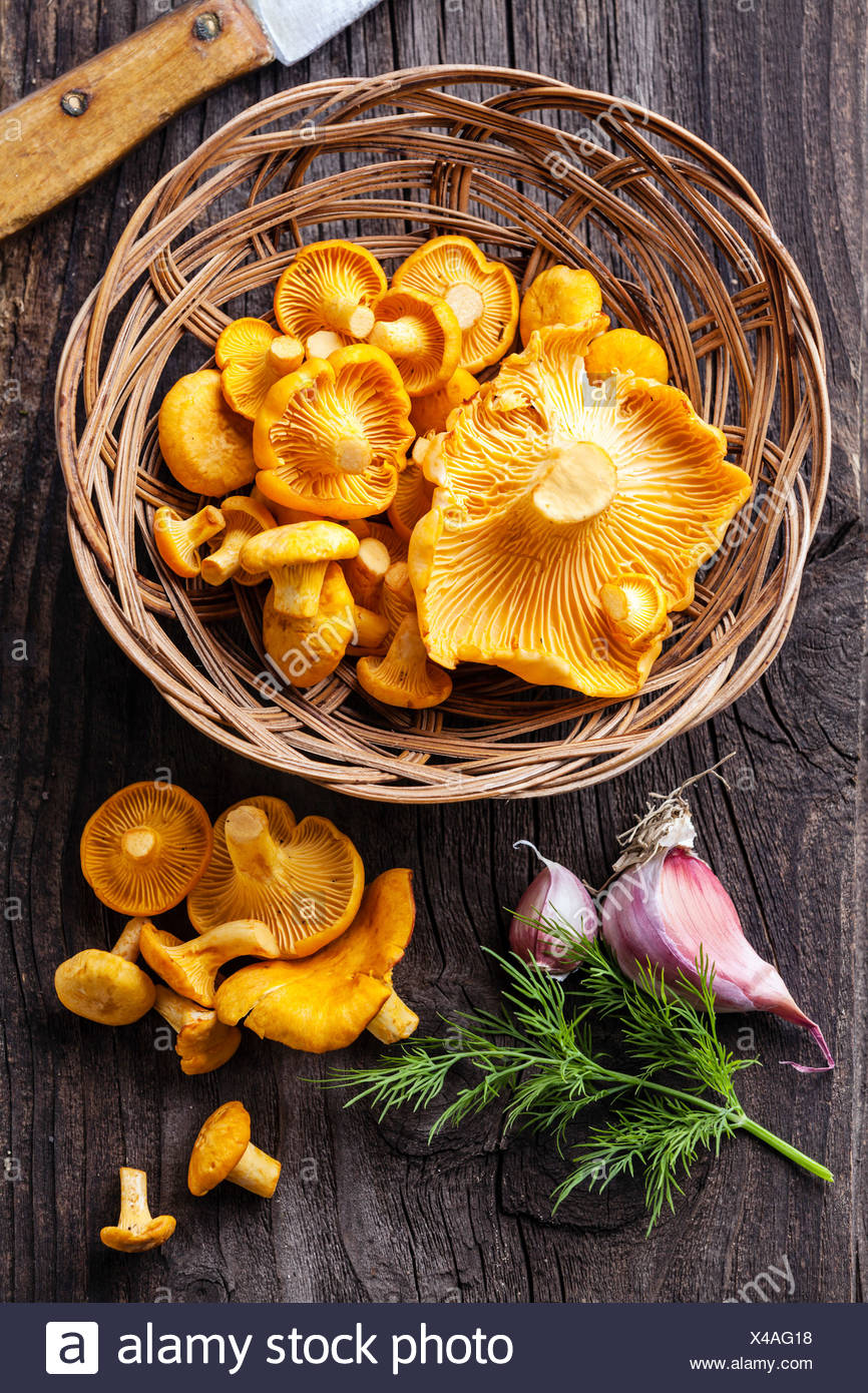 Raw chanterelles in basket on wooden texture - Stock Image