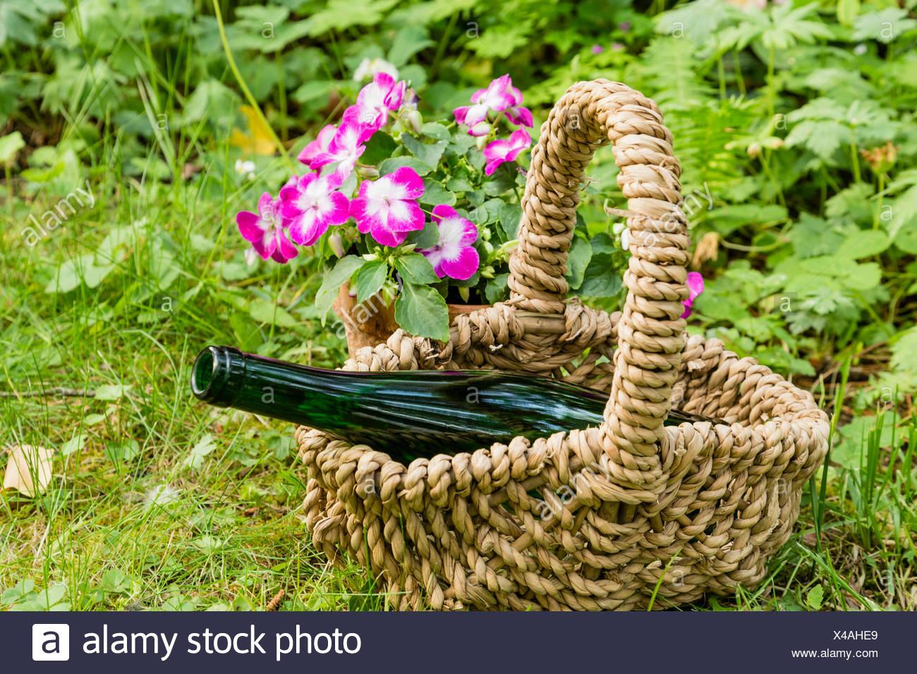 Stillleben mit Weinflasche im Garten, still life with wine bottle in a garden Stock Photo