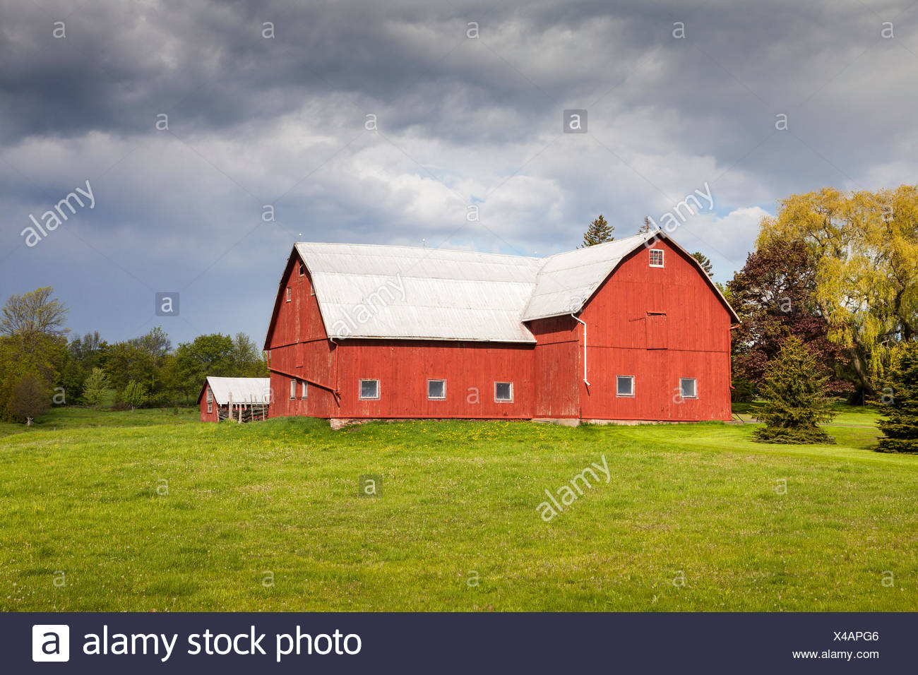 Red barn in Prince Edward County, Ontario, Canada - Stock Image