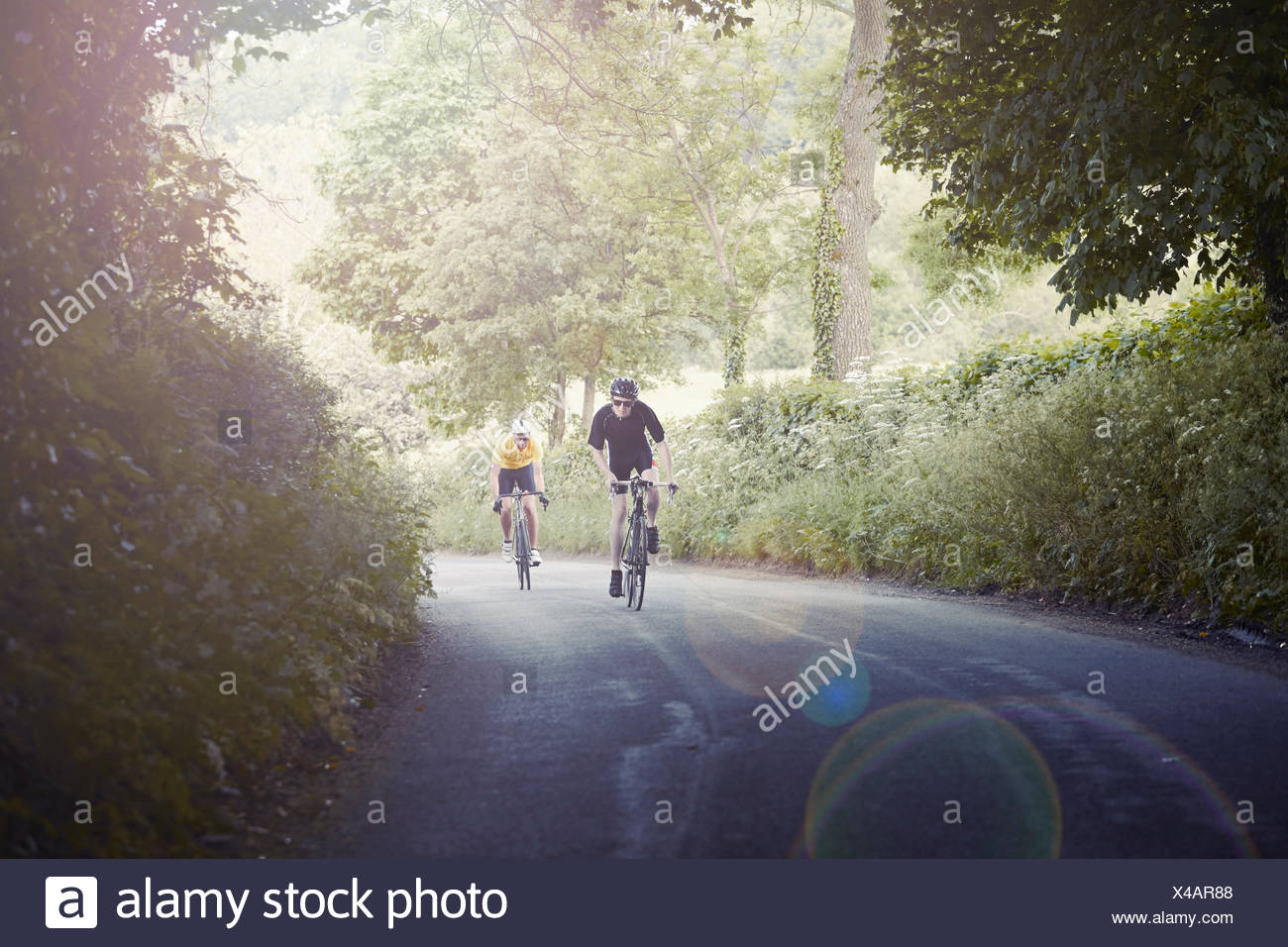 Cyclists riding on leafy countryside road, Cotswolds, UK - Stock Image