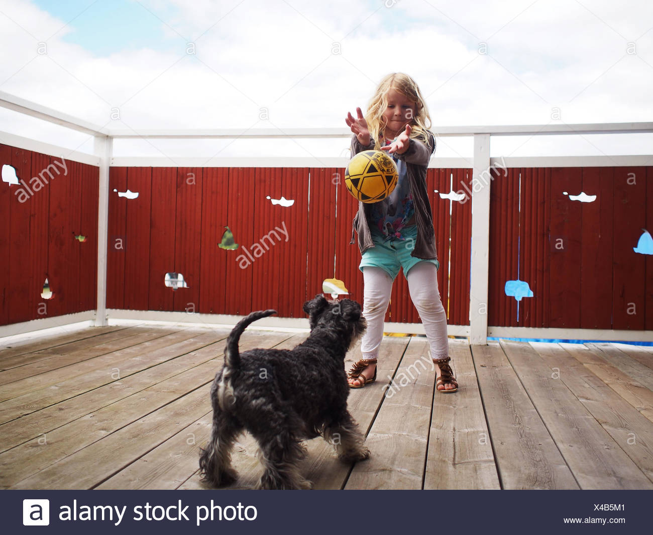 Young girl (6-7 years) playing with dog - Stock Image