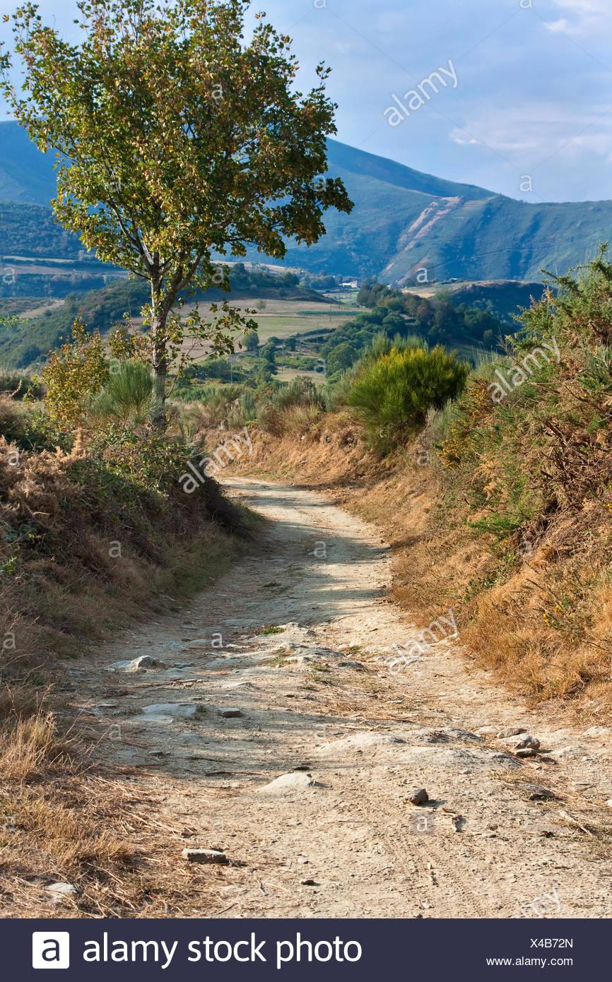 Way of St James between La Faba and La Laguna , Spain, Kastilien und Le�n, Leon - Stock Image