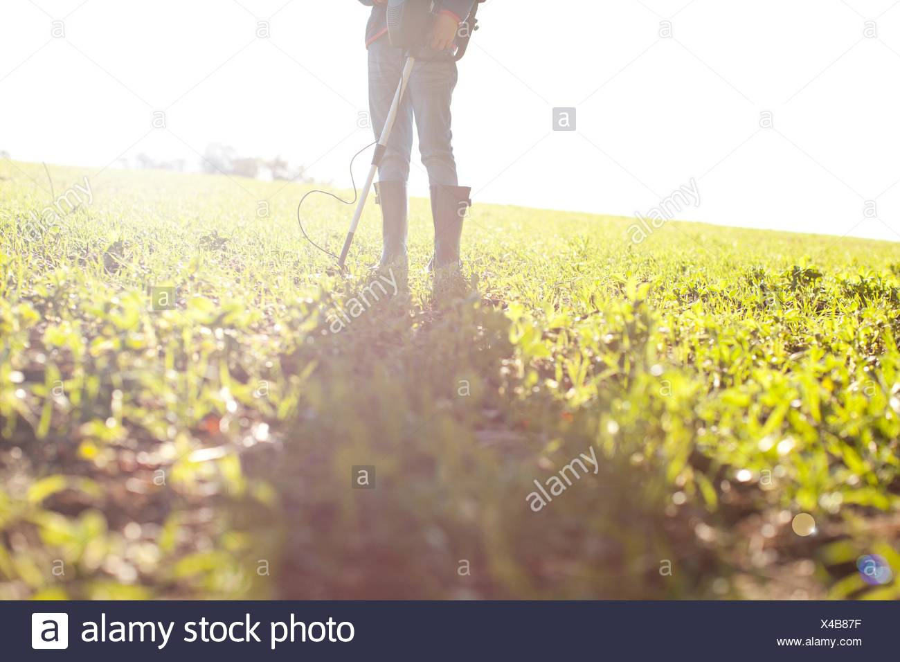 Legs of girl using metal detector in field - Stock Image