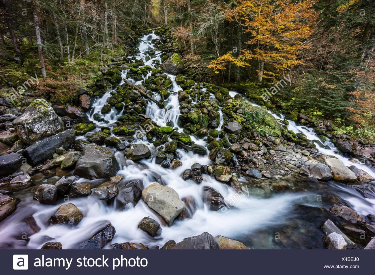 River Joèu sources, Uelhs deth Joèu, Artiga de Lin, Val d´Aran, Lleida province, Pyrenees mountains, Catalonia, Spain - Stock Image