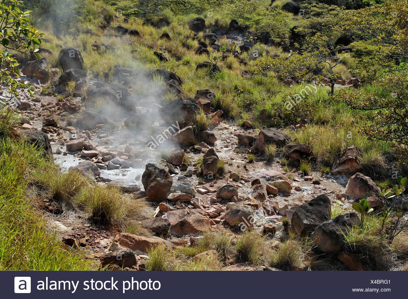 Fumaroles, Guanacaste province, Rincon de la Vieja National Park, Costa Rica, Central America - Stock Image