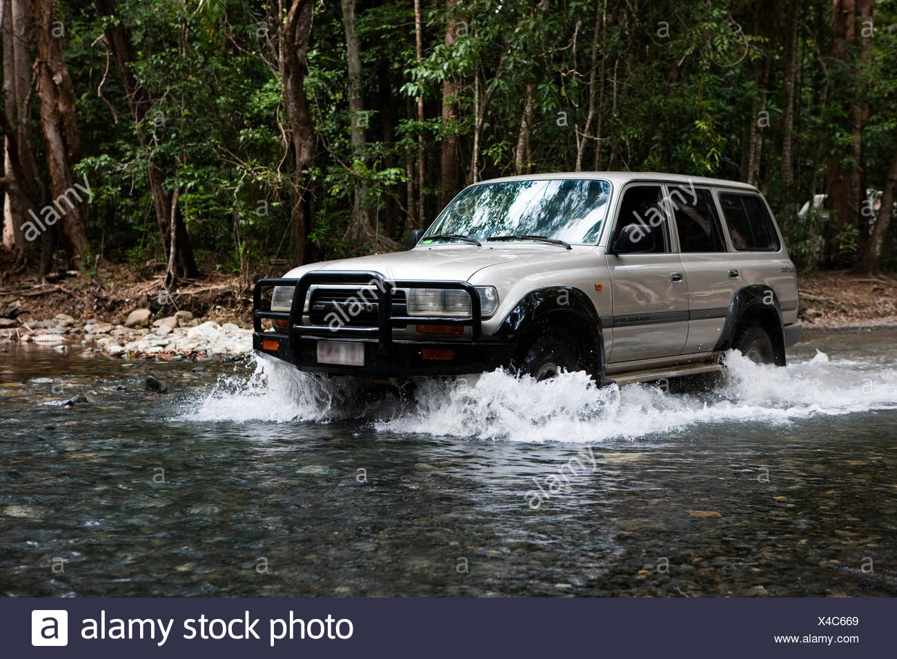 Jeep crossing a river in a rainforest in Daintree National Park, Queensland, Australia - Stock Image
