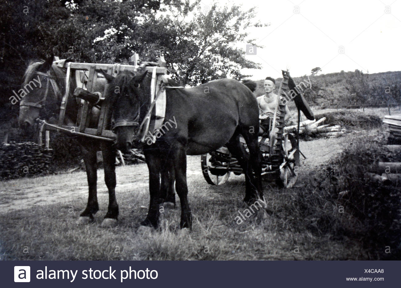 Young Mr Gessler, at his arrival from Switzerland before starting the Domaine de Joÿ wine and armagnac estate, Panjas, Gers, - Stock Image