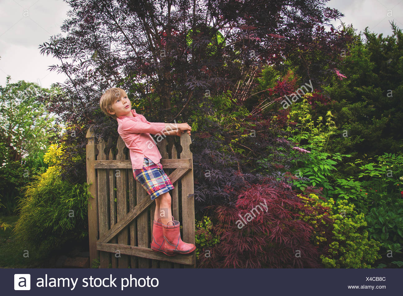 Portrait of a boy standing on wooden gate, looking up - Stock Image