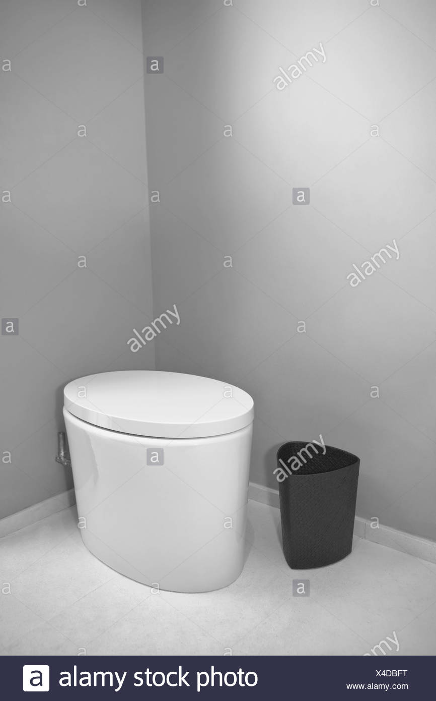 Toilet and a waste container in the bathroom - Stock Image