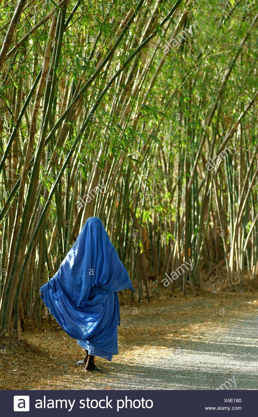 bamboo avenue way woman veils veil Islam Muslims Bamboo avenue hotel gazelle d'Or Taroudannt Taroudant Morocco North Africa - Stock Image