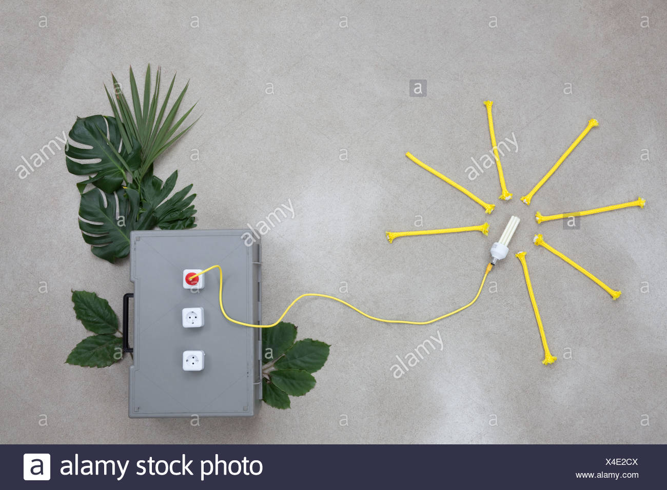 Lightbulb connected to electric sockets with leaves Stock Photo
