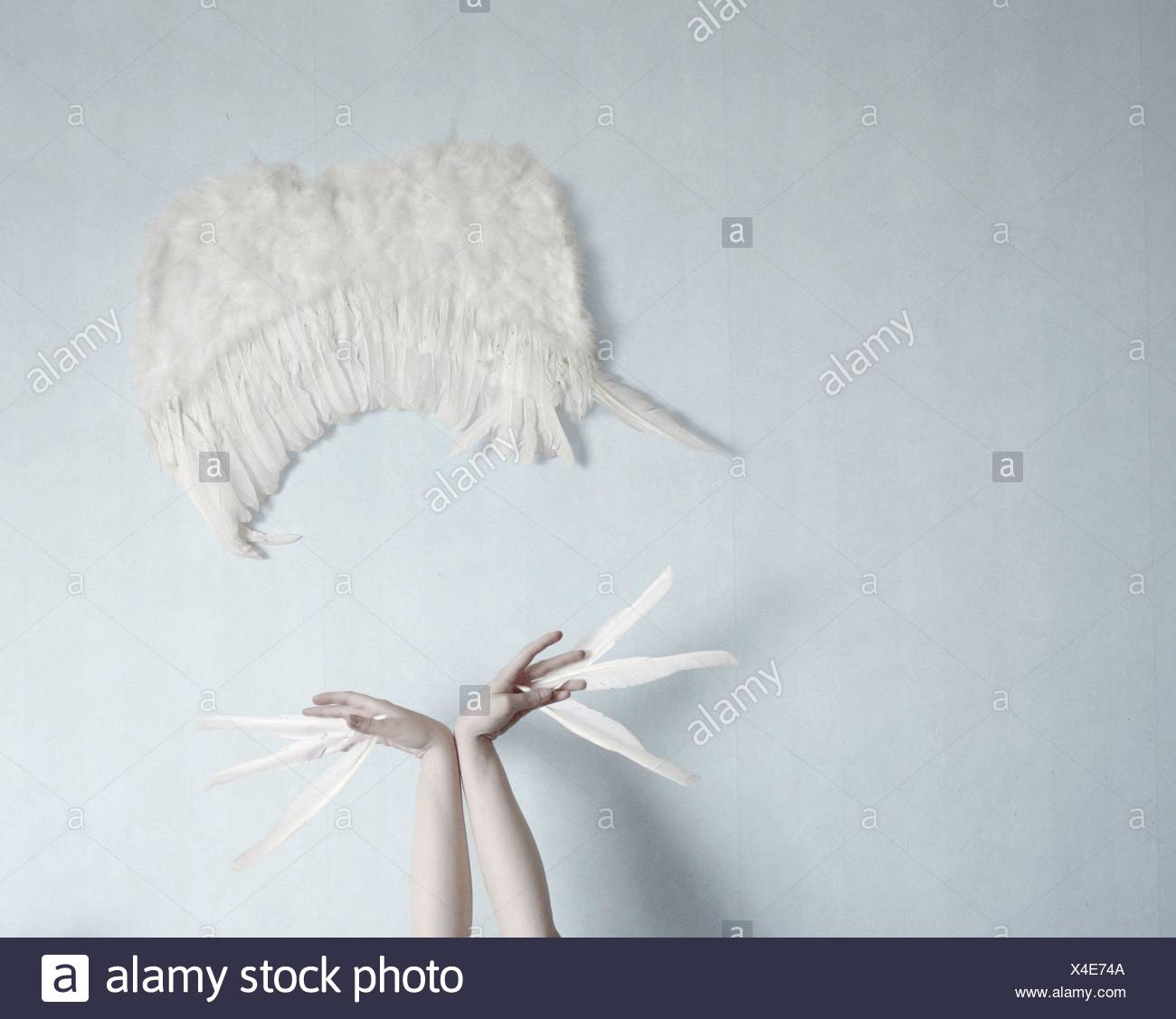 Conceptual shot of wings - Stock Image