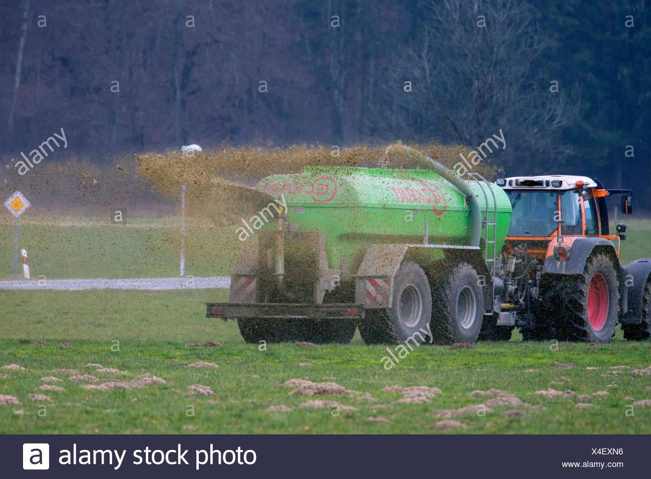 Landwirt bringt Guelle aus, Deutschland, Bayern, Oberbayern | application of liquid manure, Germany, Bavaria, Oberbayern, Upper  - Stock Image