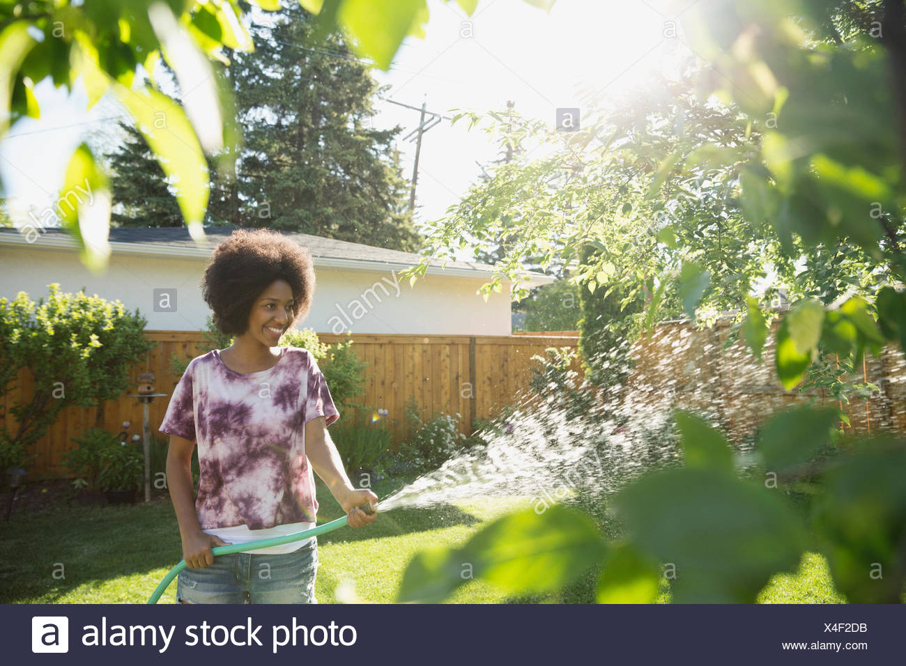 Woman watering garden in sunny backyard - Stock Image