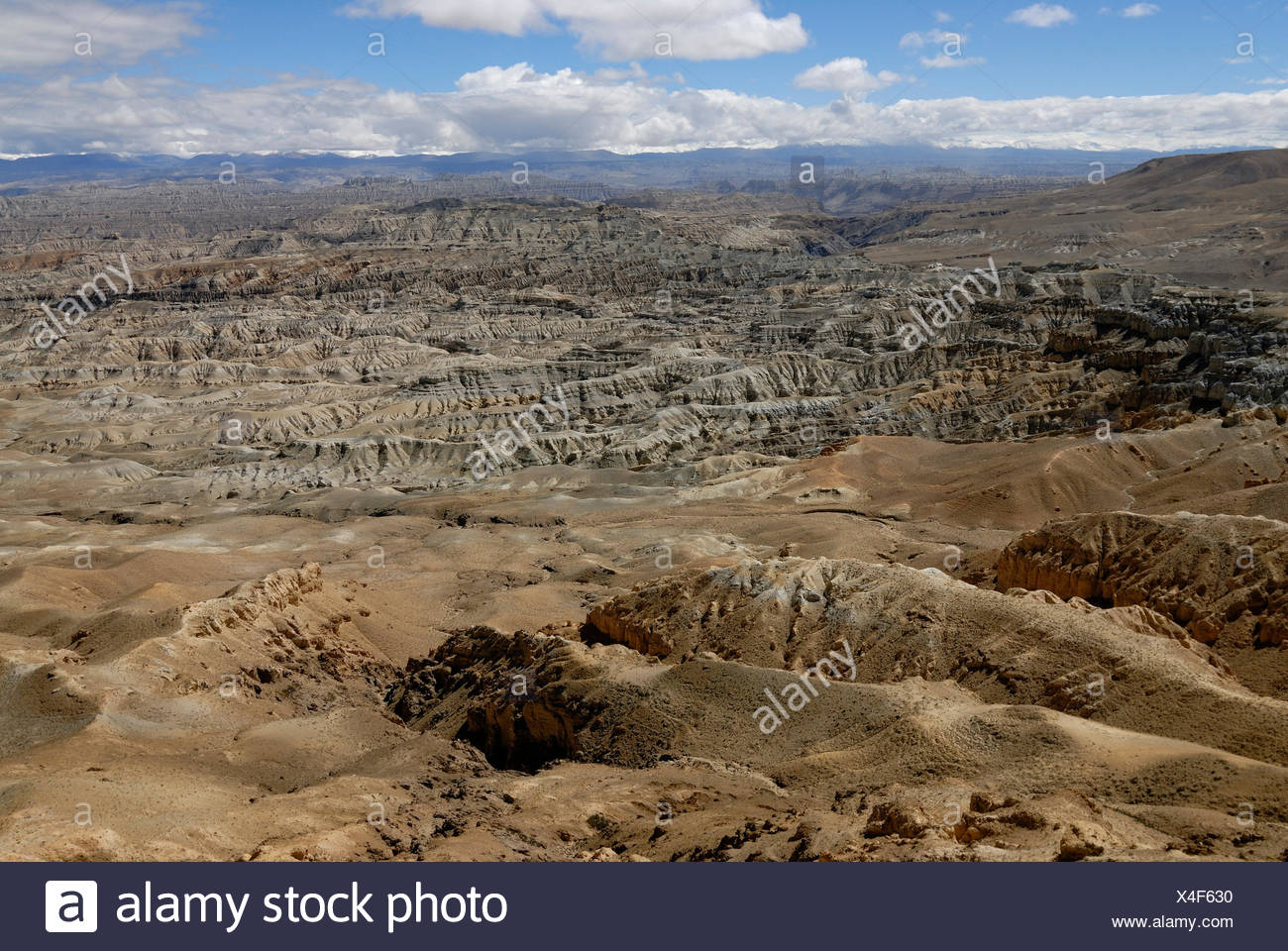 Canyon landscape around the Sutlej River in front of the Himalayan main ridge in the ancient Kingdom of Guge in Western Tibet - Stock Image