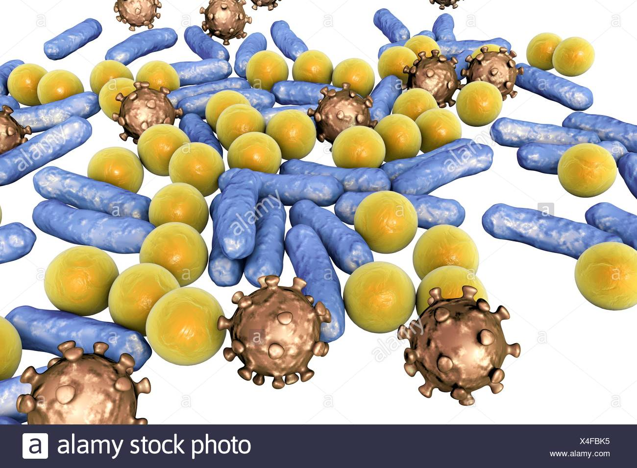 Various microbes of different shapes, computer illustration. Mixture of microorganisms including spherical (cocci) and rod-shaped bacteria together with viruses. - Stock Image