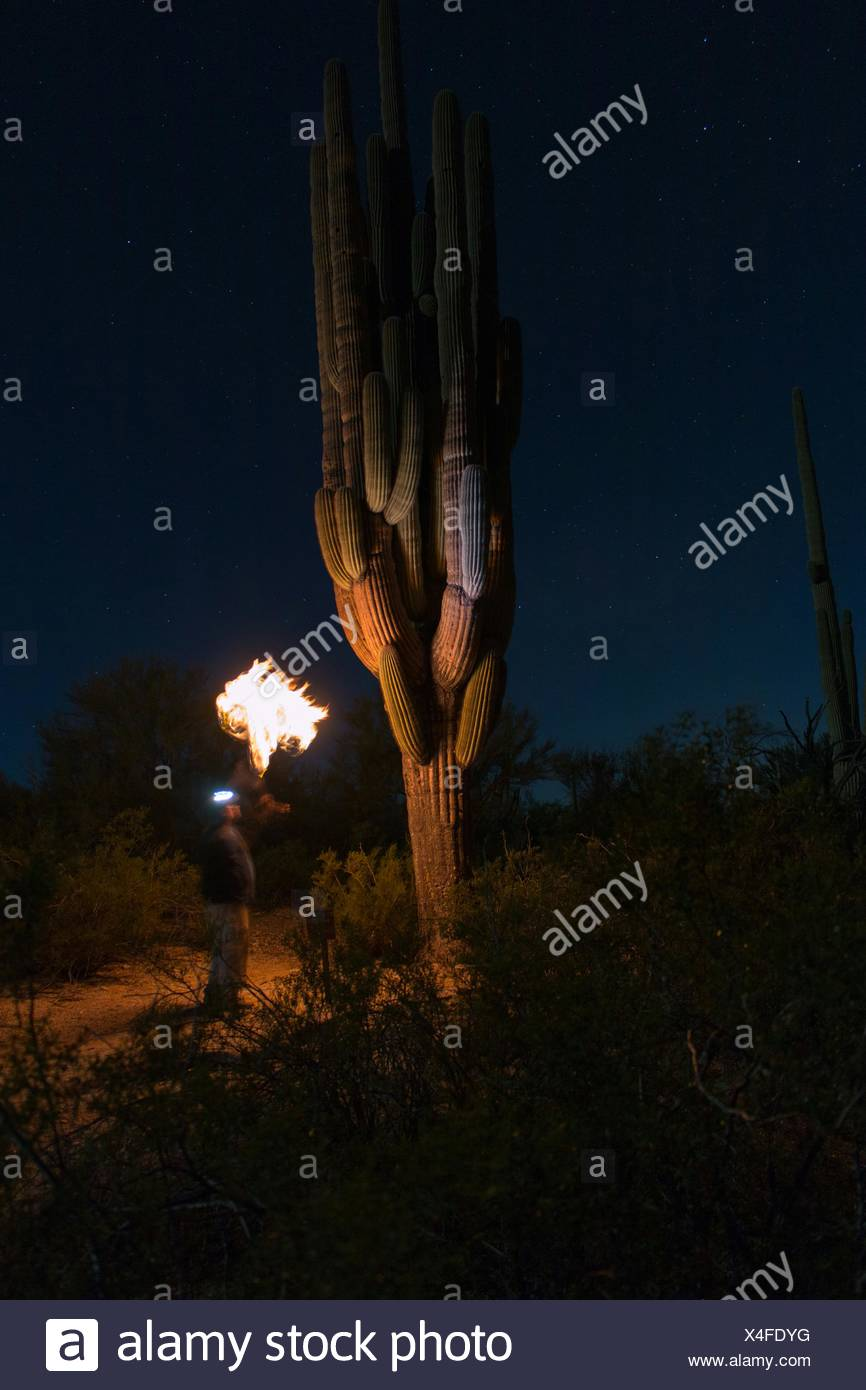 Fire Breather Performing At Night - Stock Image