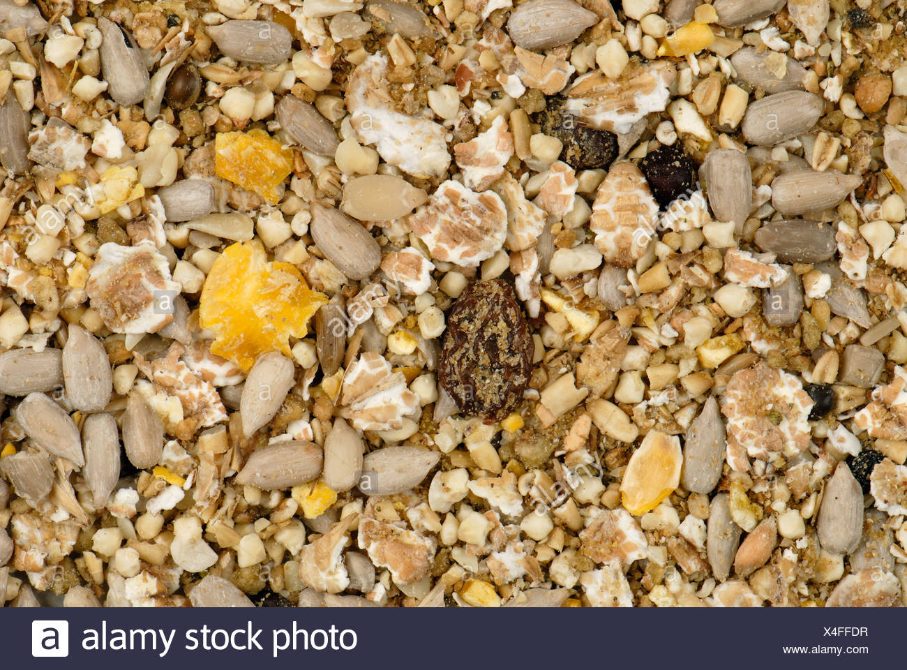 Wild bird feed for garden feeders with pine nuts crushed cereal grains and various seeds - Stock Image
