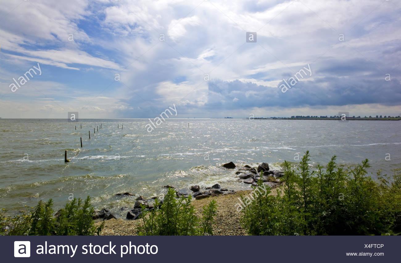 view to Markermeer, Netherlands, Noord Holland, Hoorn - Stock Image
