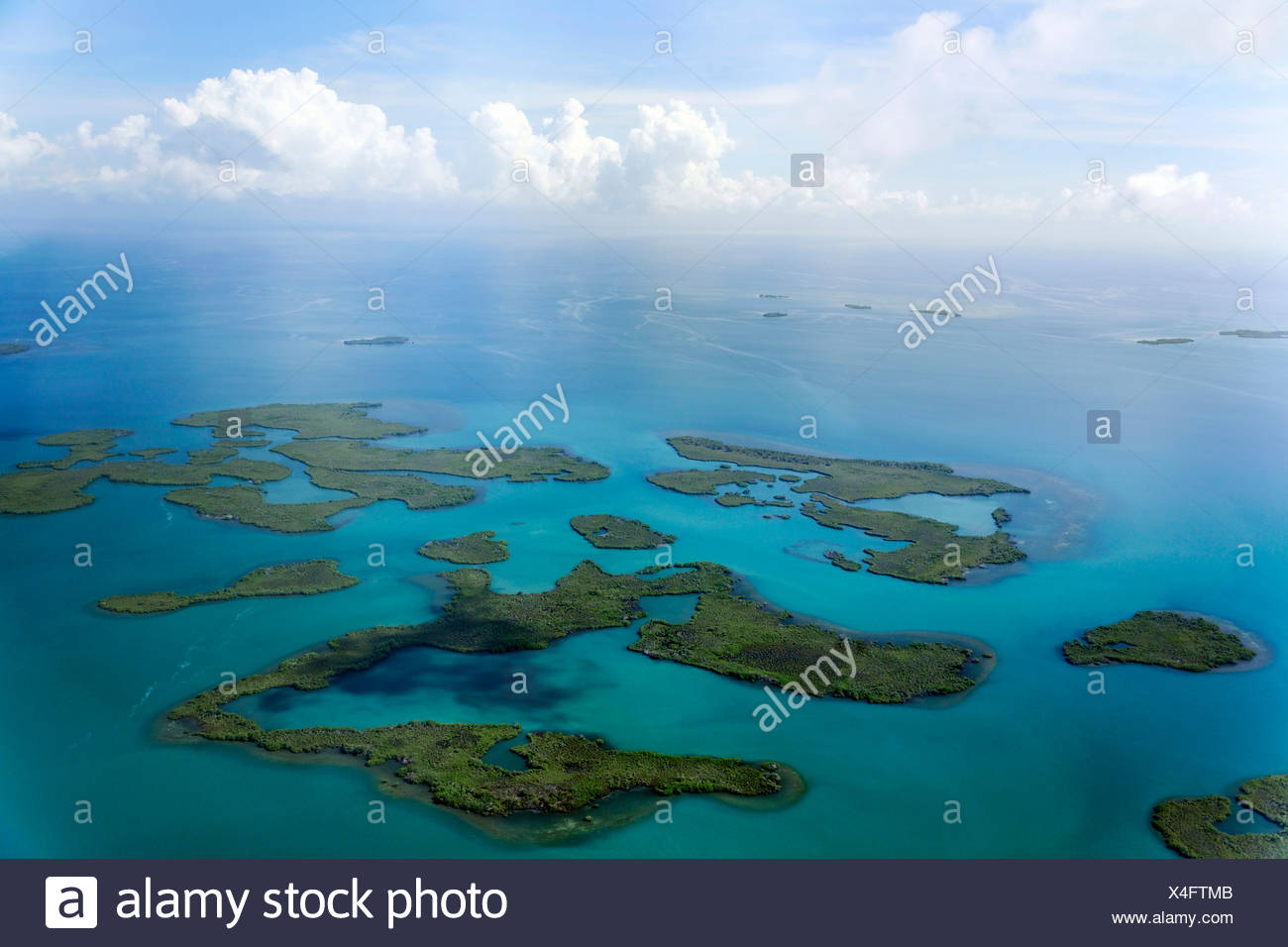Mangroves in the ocean, aerial picture, coast between Dagria and Punta Gorda, Belize, Central America, Caribbean Stock Photo