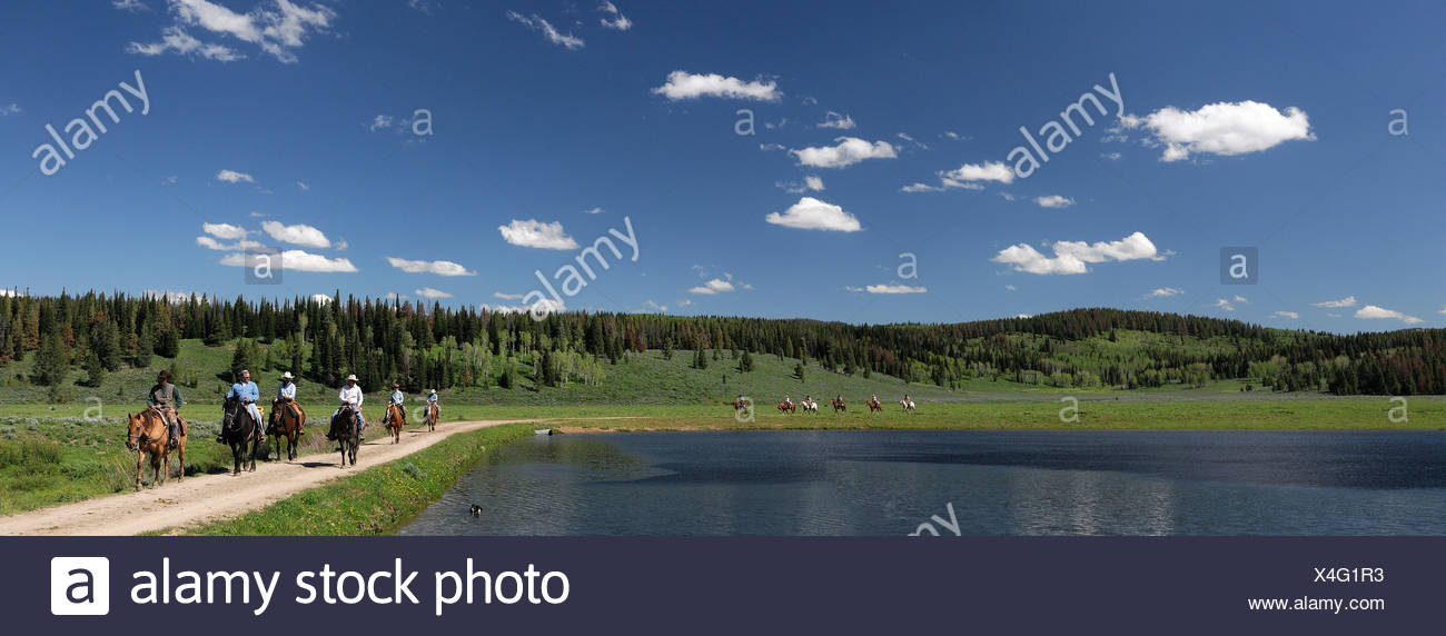 Guest's Horseback riding Flying A Ranch Guest Ranch Bondurant Wyoming USA forest lake Stock Photo