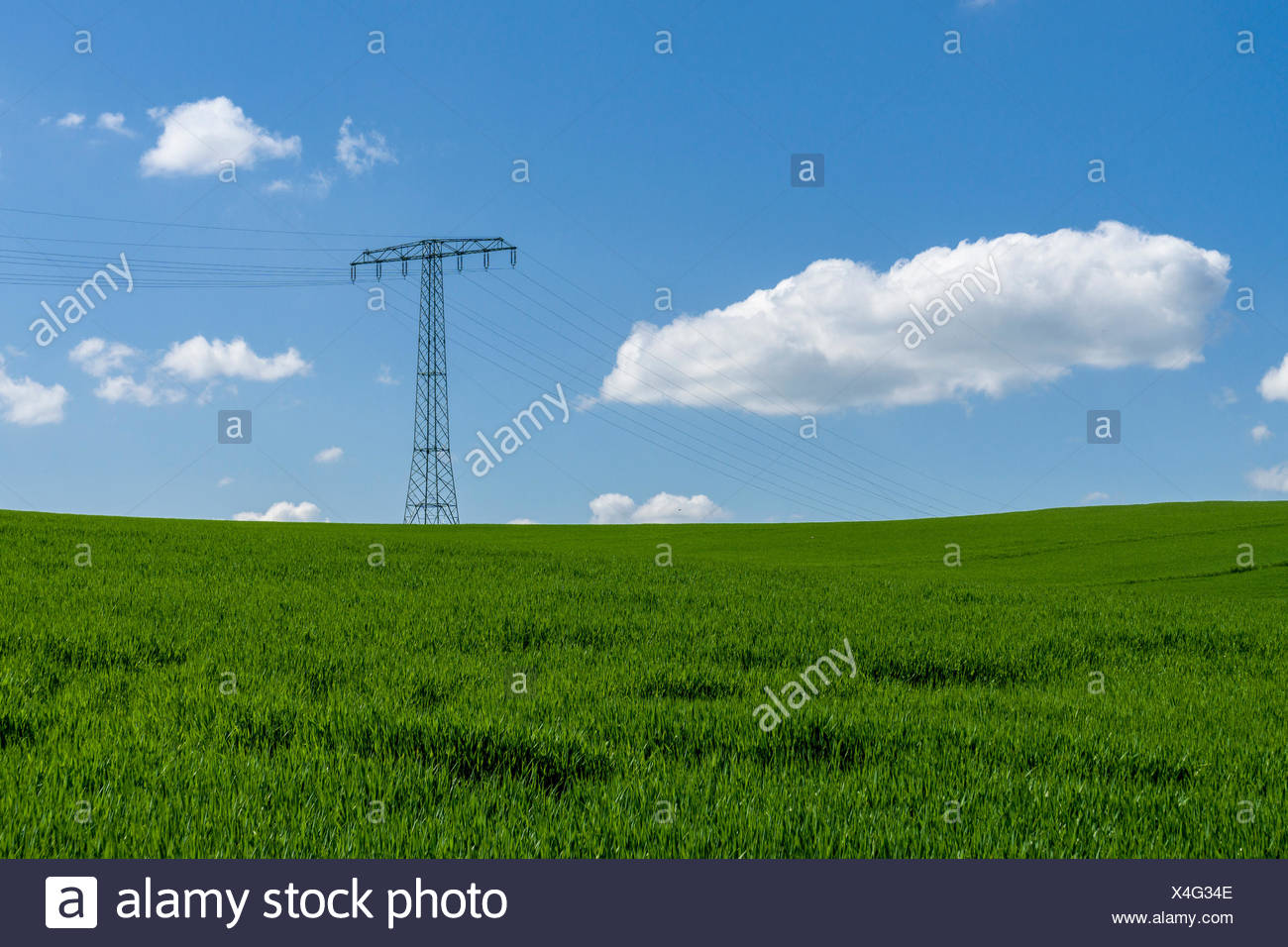 Agricultural landscape with overhead powerlines, green fields and cloudy blue sky, Cunnersdorf, Saxony, Germany - Stock Image