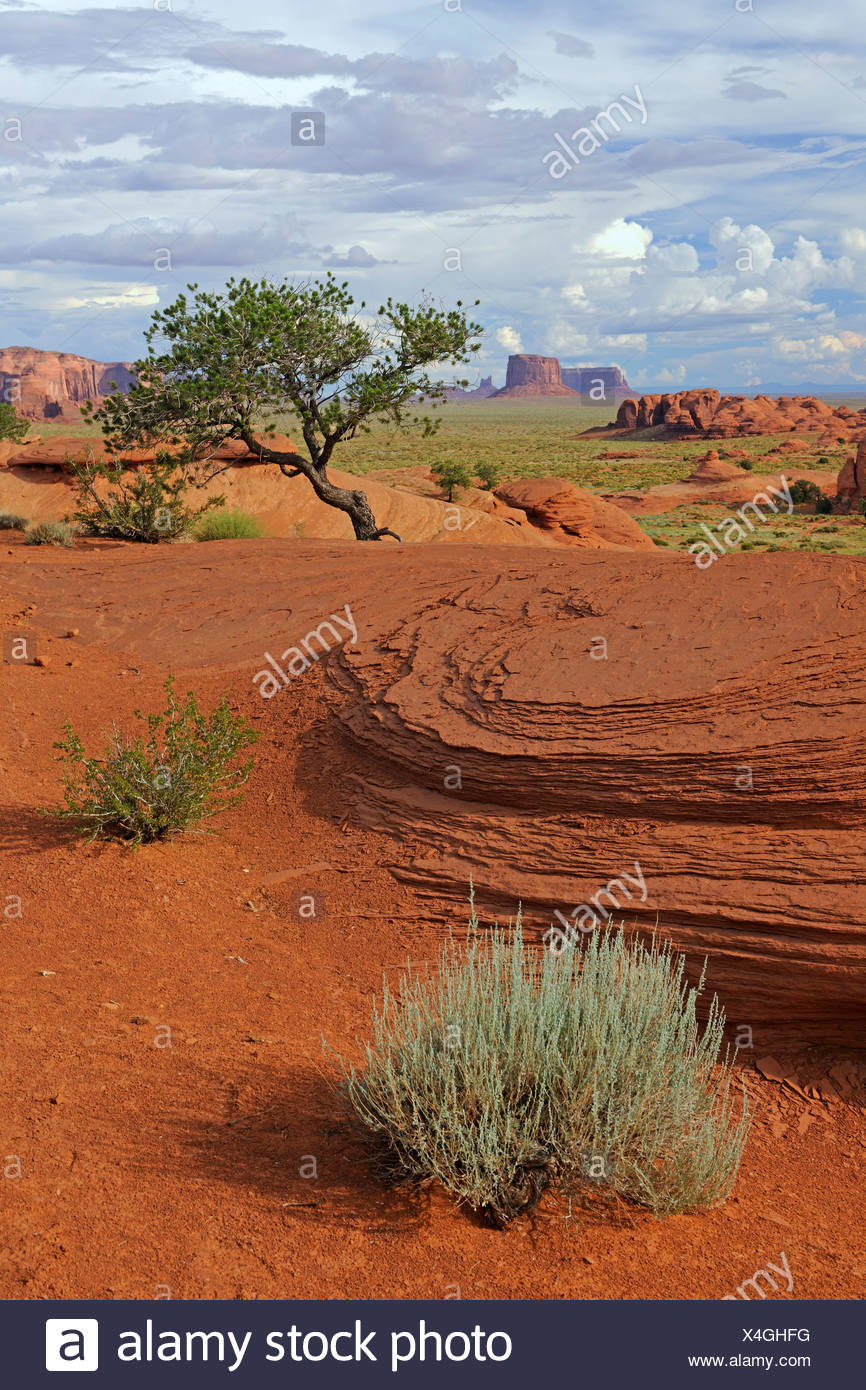 Typical landscape in Mystery Valley, Arizona, USA - Stock Image