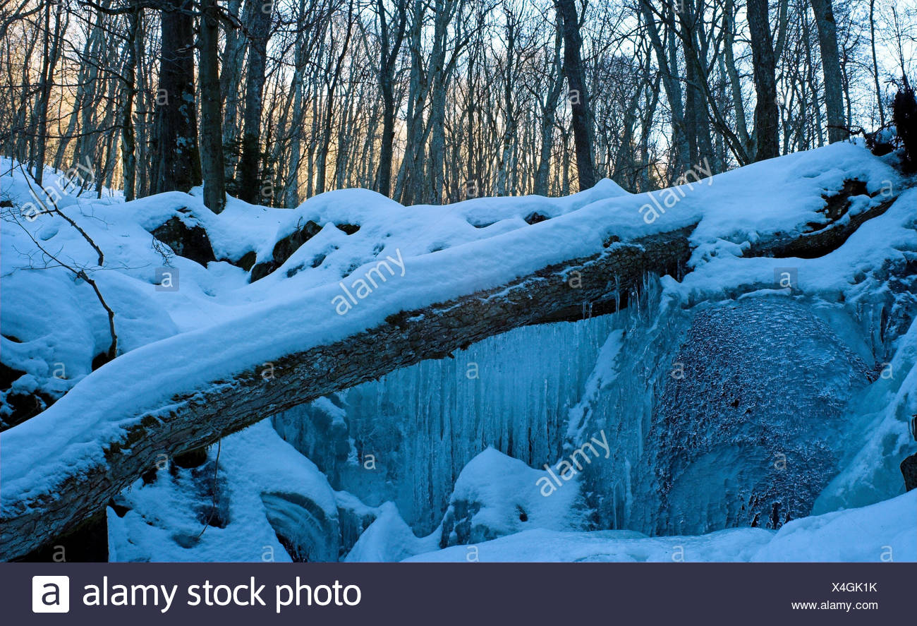 winter trunk stream ice diagonal myth saw snow forest teufelsmhle rhn - Stock Image