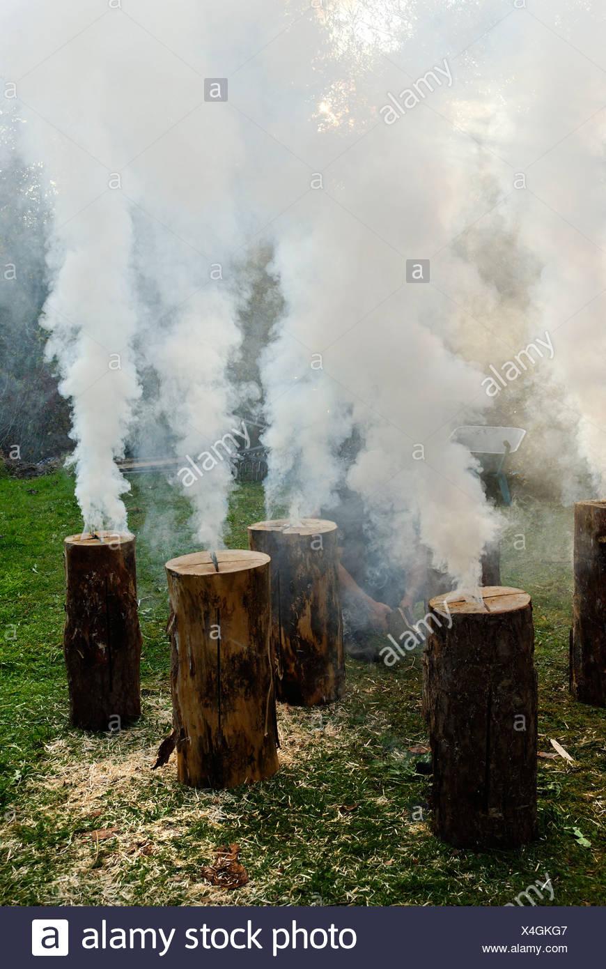 Burning, smoking Swedish torches, flaming torch Stock Photo